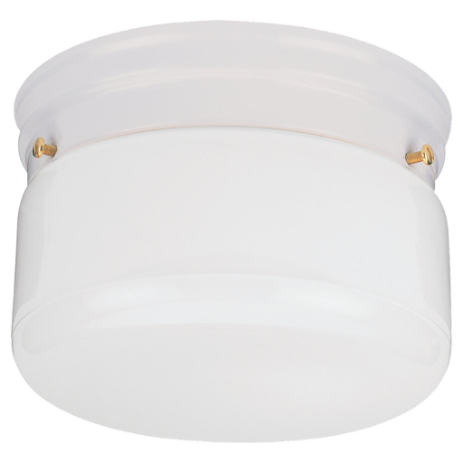 SEG 5322-15 CLOSE TO CEILING TWO LIGHT WHI