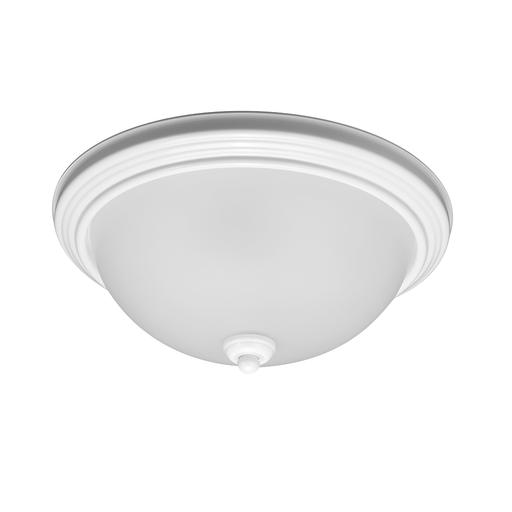 SEG 79565BLE-15 3L FLSH WHITE