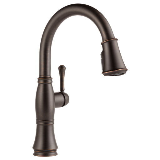 Cassidy Single Handle Pull-Down Kitchen Faucet with ShieldSpray Technology - Venetian Bronze