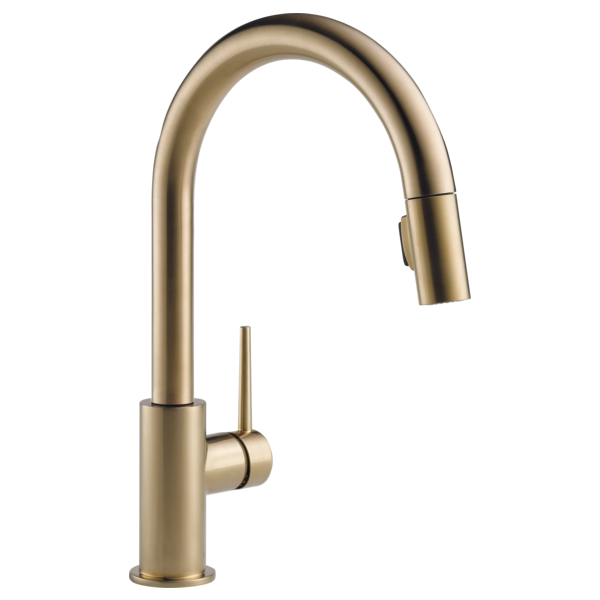 Trinsic Single Handle Pull-Down Kitchen Faucet - Champagne Bronze