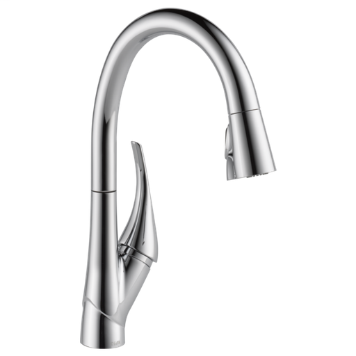Esque Single Handle Pull-Down Kitchen Faucet with ShieldSpray Technology - Chrome