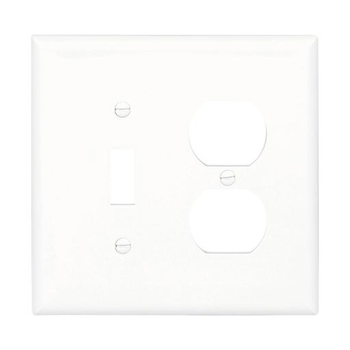2 GANG COMBO TOGGLE SWITCH DUPLEX PLUG GFI GFCI BLANK PLASTIC COVER PLATE WHITE