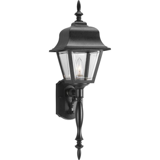 Non-Metallic Incandescent One-Light Wall Lantern - P5657-31