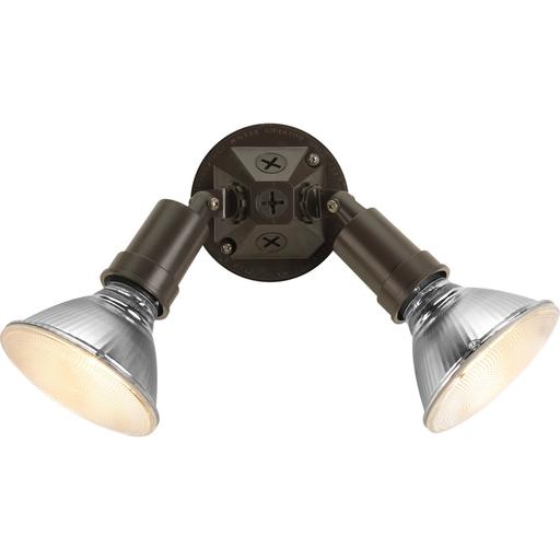 Two-Light Adjustable Swivel Flood Light