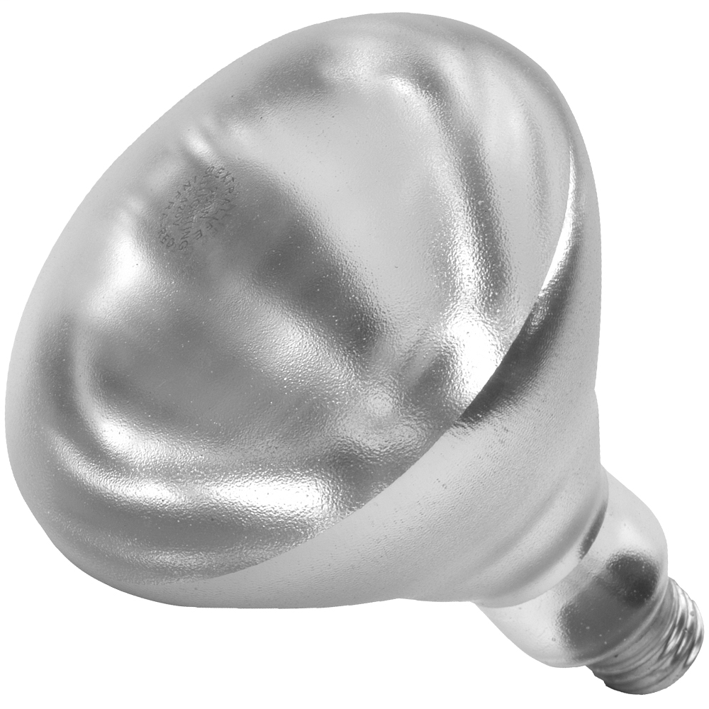 Shat-R-Shield,01697W,250R40/HT/CLEAR (PK X 12)
