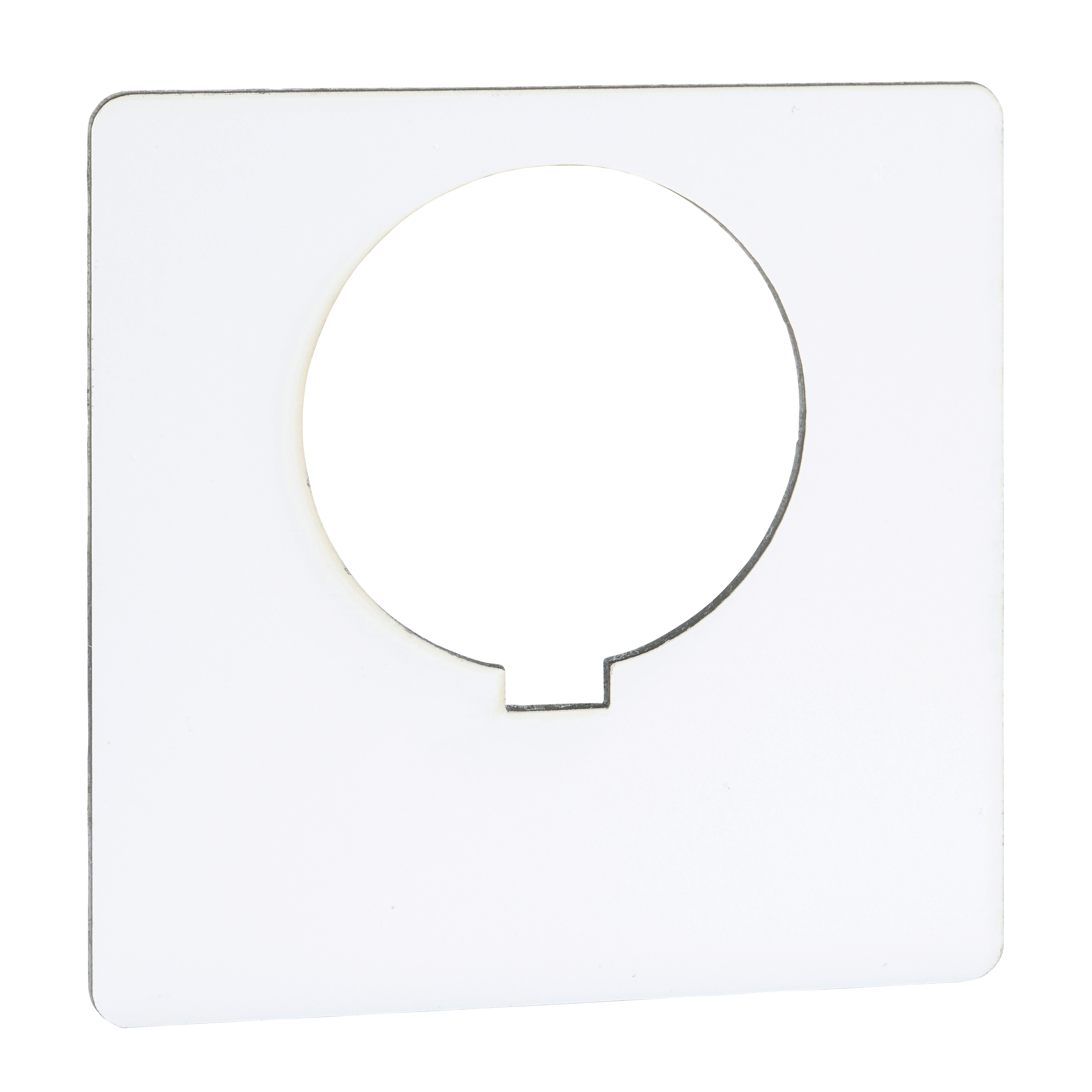 SQUARE D 30MM LEGEND PLATE - BLANK (WHITE)