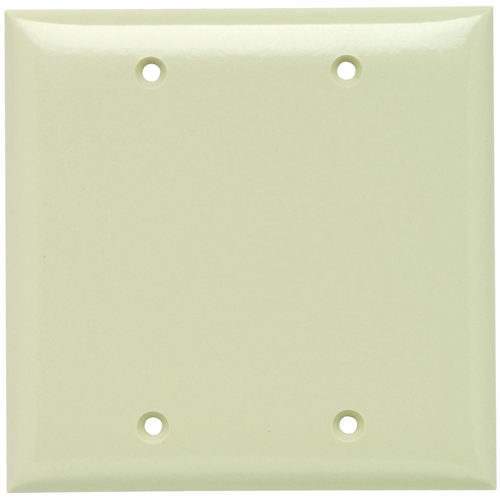 Mayer-P&S SP23-I PLATE PLASTIC 2G BLANK W-1