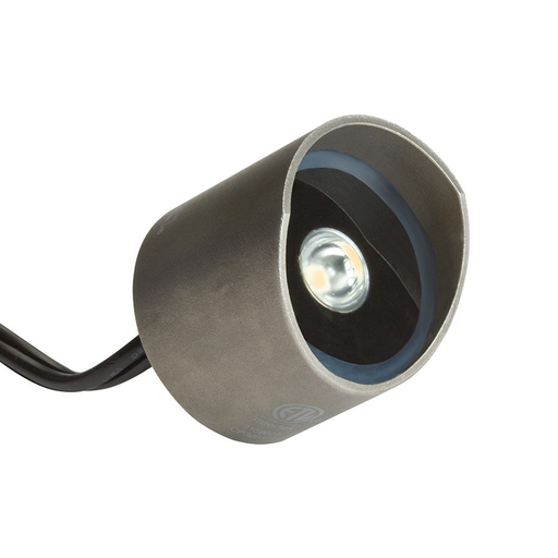 2-in-1 LED Accent - Underwater and Out of Water SS