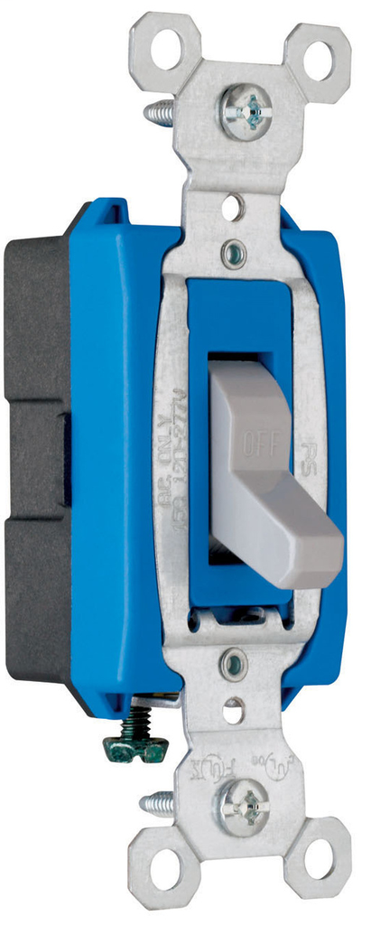Pass & Seymour CS15AC1-GRY 15 Amp 120/277 VAC 1-Pole Gray Glass Reinforced Nylon Screw Mounting Toggle Switch