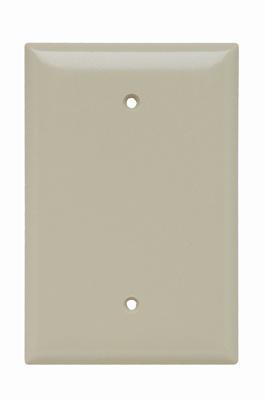 P&S SPO13I PLASTIC PLT JUM 1G BLANK