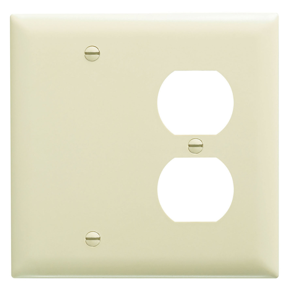Pass & Seymour TP138-I 2-Gang 1-Duplex Receptacle 1-Blank Ivory Nylon Standard Combination Unbreakable Wallplate