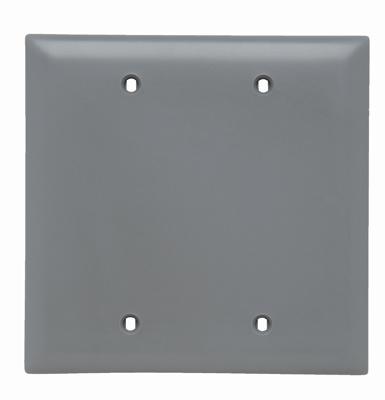 Pass & Seymour TP24-GRY 2-Gang Blank Gray Nylon Standard Unbreakable Wallplate