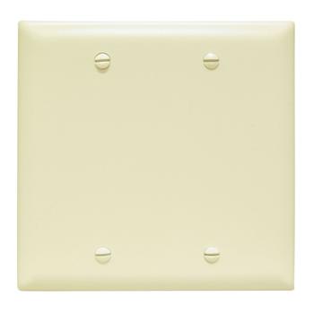 Pass & Seymour TP23-I 2Gang Wall Plate, Blank, Box Mount, Nylon, Standard - Ivory
