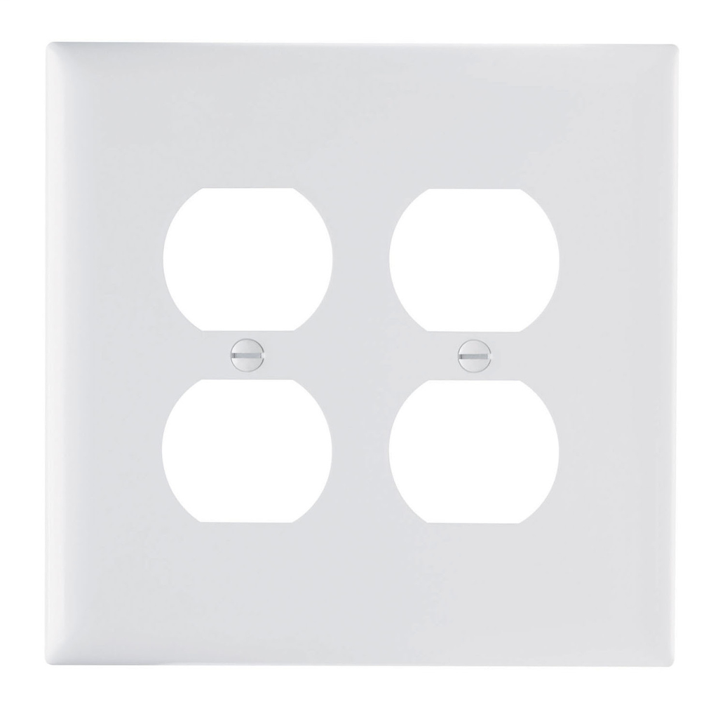 Duplex Receptacle Openings, Two Gang, White