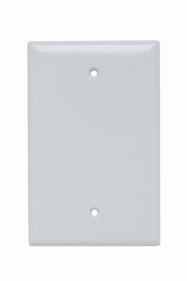 Pass & Seymour SPJ13-W 1-Gang Blank White Smooth Thermoset Plastic Junior-Jumbo Wallplate