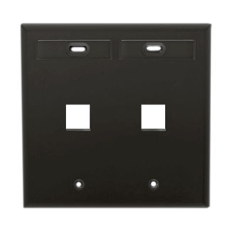 LEV 42080-2EP WP 2PORT DG ID BK