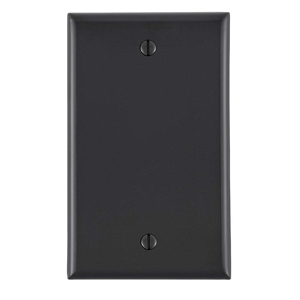 1-Gang No Device Blank Wallplate, Standard Size, Thermoplastic Nylon, Box Mount, - Black