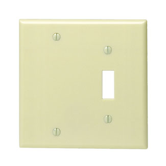 Leviton 86006 4.56 x 0.22 x 4.5 Inch 2-Gang Smooth Ivory Thermoset Box Mount Standard Combination Wallplate