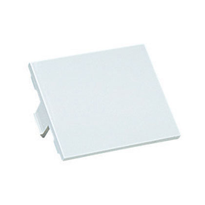 Mayer-1/2-size blank insert. Reserves space for future upgrades, Electric Ivory.-1