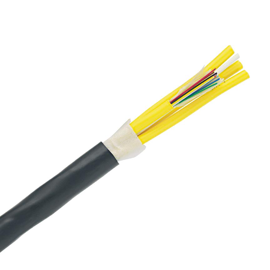 PAN FOKPX06 6-Fiber,OM3,10GbE,MM,PL