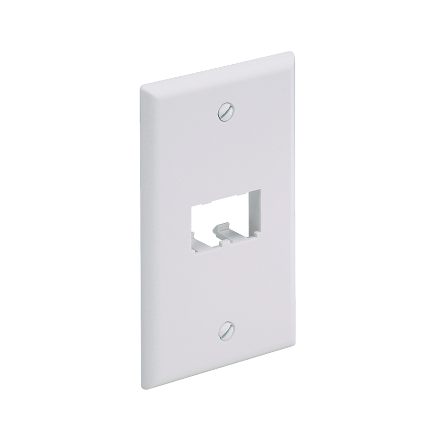 Panduit CFP2IW 1-Gang Off White Copper 2-Port Data Communication Face Plate