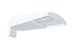 Lotblaster Type IV 110W 5000K LED UPA 120-277V Bilevel Dim White