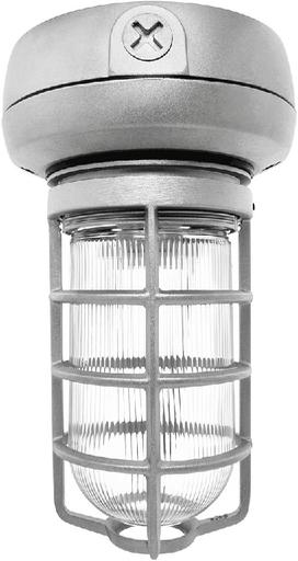 RAB VX1F13 VP CFL CEILING 13W QT 1/2 WITH GLASS GLOBE CAST GD