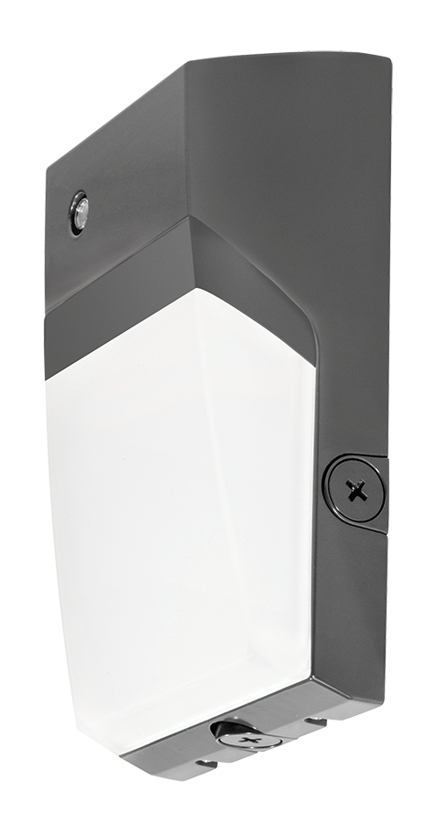 RAB WPTLED40/D10/PC2 LED WALL PACK
