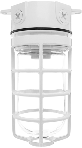 RAB VX100DGW VAPOR PROOF 100 CEILING 4 BOX 1/2 WHITE W/ GL GLOBE CAST GD