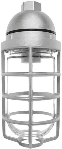 RAB VP200DG VAPOR PROOF 200 PENDANT 1/2 WITH GLASS GLOBE CAST GUARD