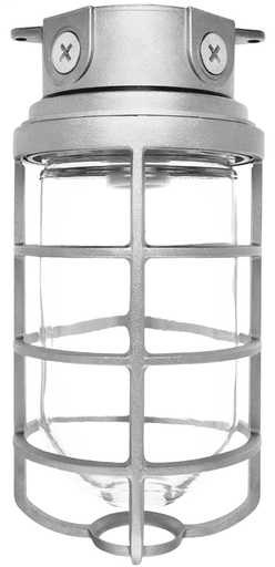 Rab VX200DG Vapor Proof Clear Glass Globe Fixture Box Mount w/ 4 Inch Box & Diecast Guard 1/2 In Hubs