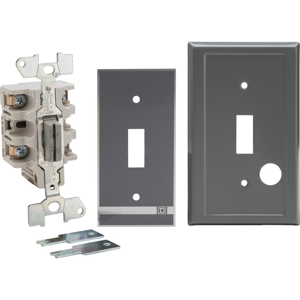 Manual Switch - Flush Mount - 2P - Key Operated - No Indicator - 600VAC