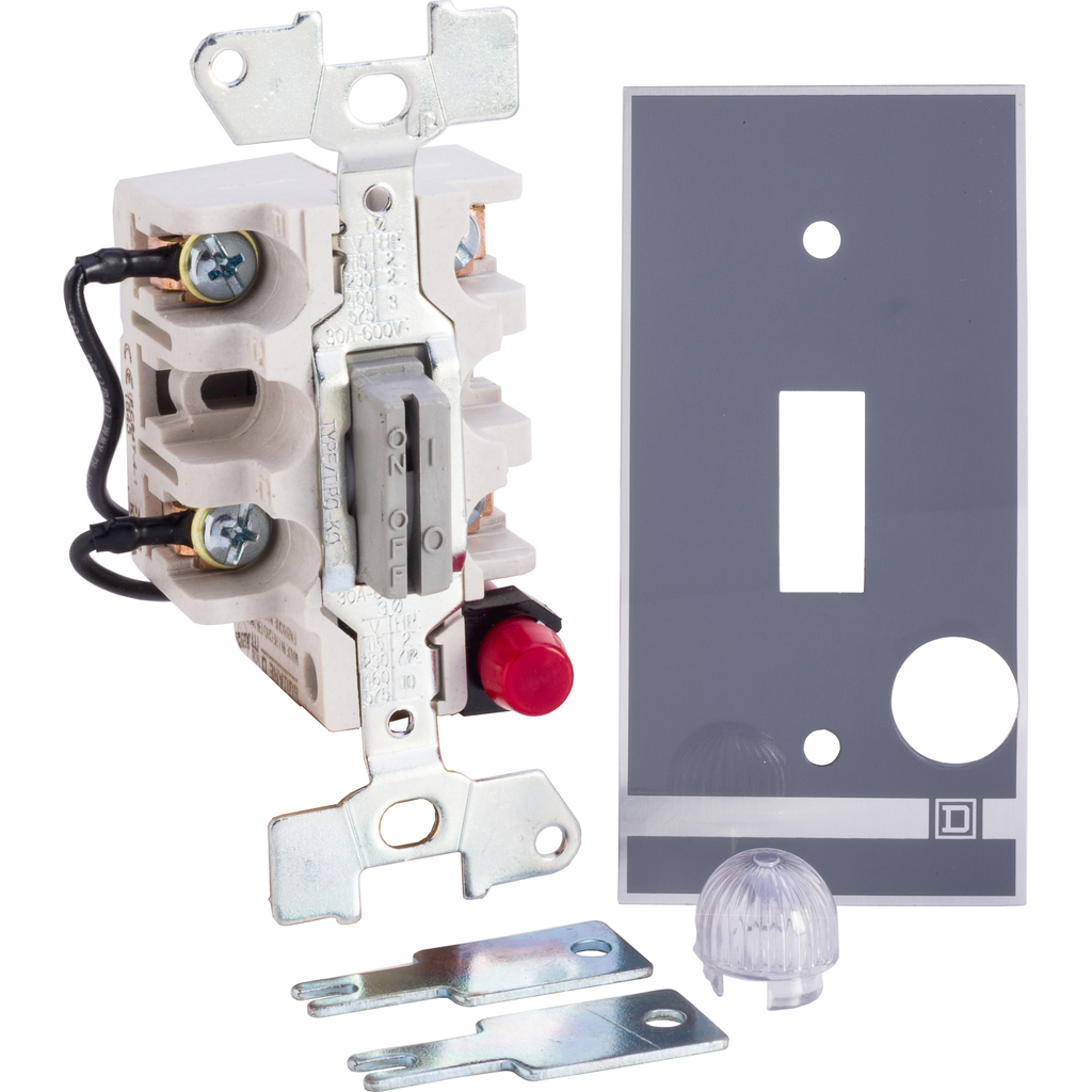 Manual Switch - Open - 2P - Key Operated - Red Indicator - 600VAC