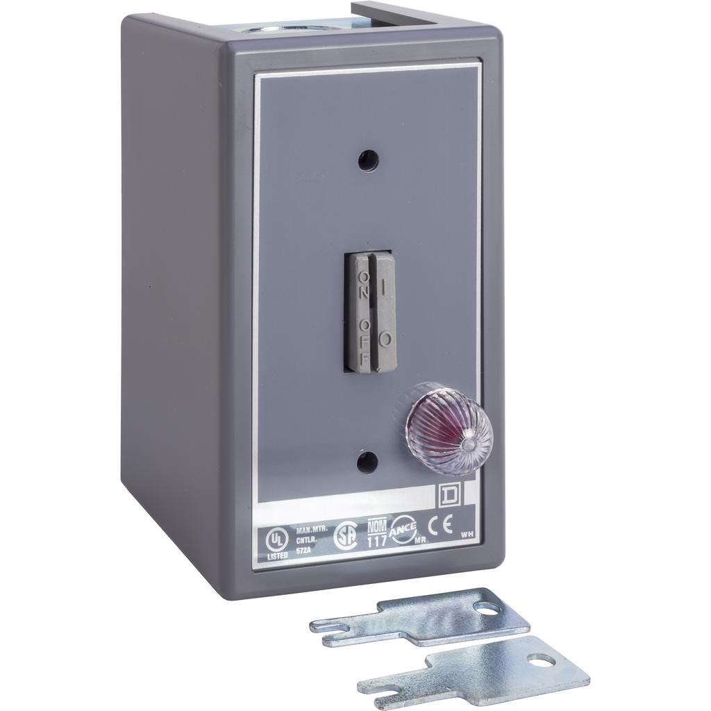 Manual Switch - NEMA 1 - 2P - Key Operated - Red Indicator - 600VAC
