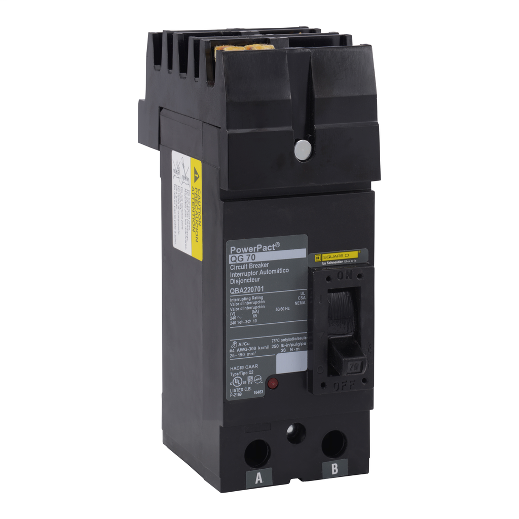 PowerPact Q - molded case circuit breaker - 2-pole - 10 kA - 240 V - 200 A