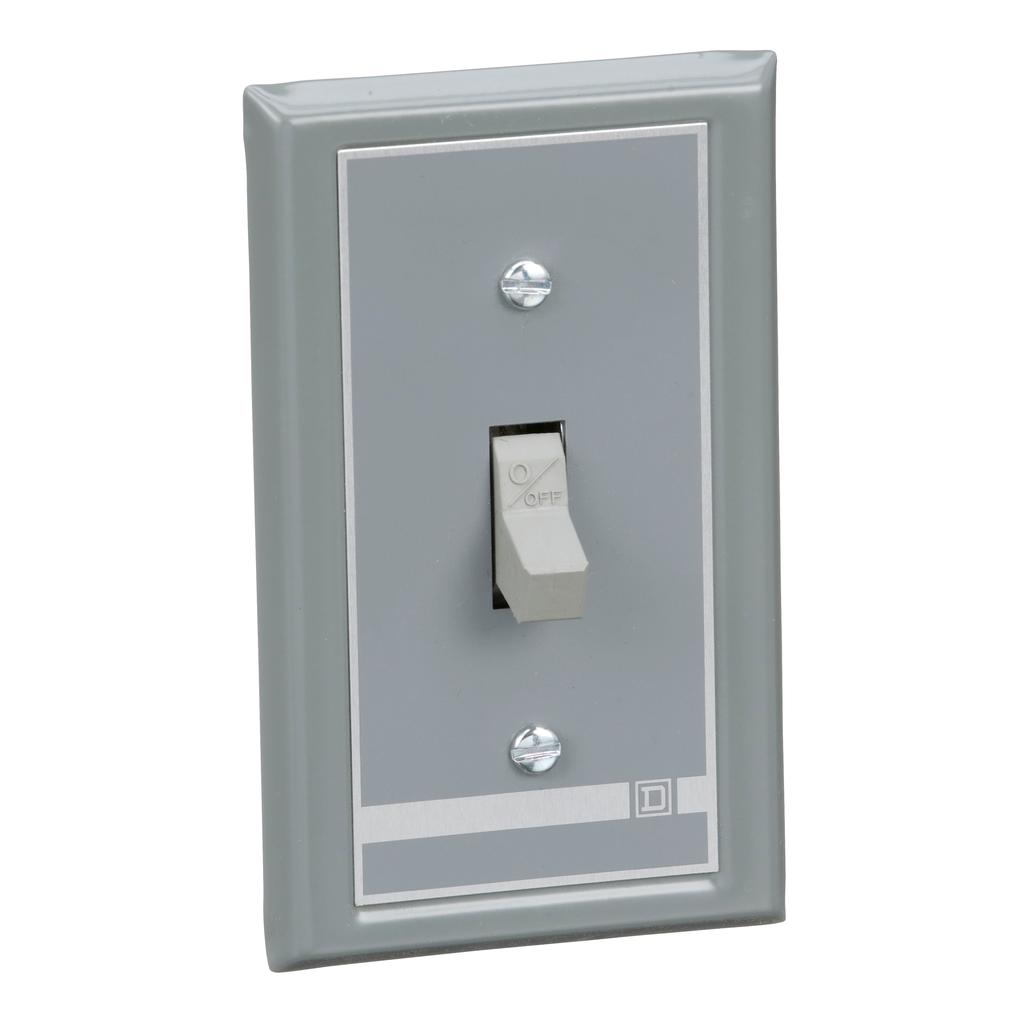 Manual Switch - Flush Mount - 2P - Toggle Operated - No Indicator - 600VAC