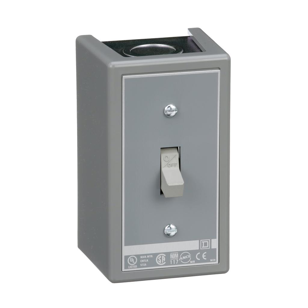Manual switch, 2 P, 30 amp, toggle operated, no pilot light, 600 VAC, NEMA 1 enclosure
