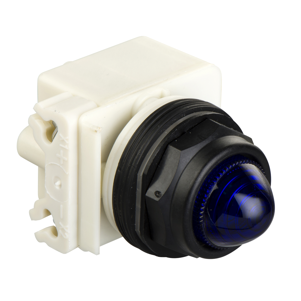 Mayer-PILOT LIGHT 120VAC 30MM SK +OPTIONS-1