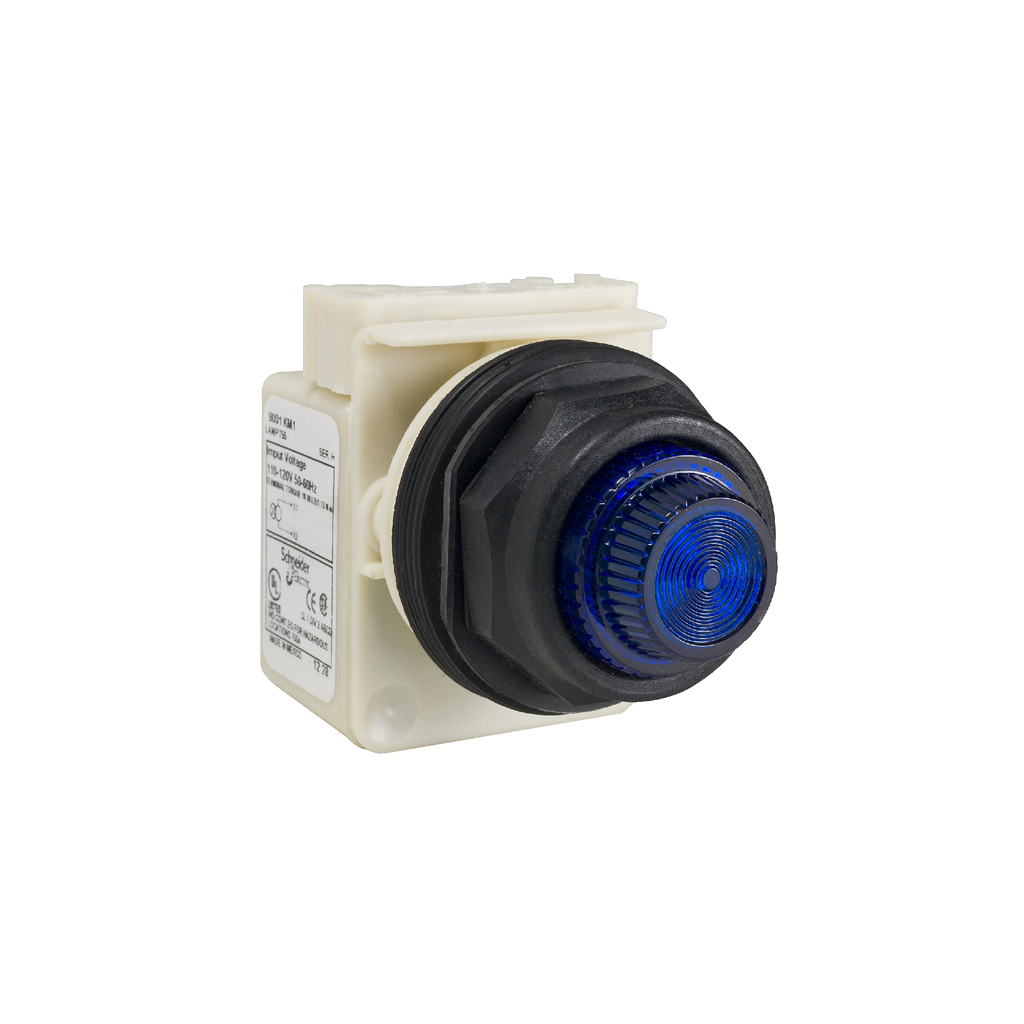 Mayer-PILOT LIGHT 120V 30MM TYPE SK+OPT-1
