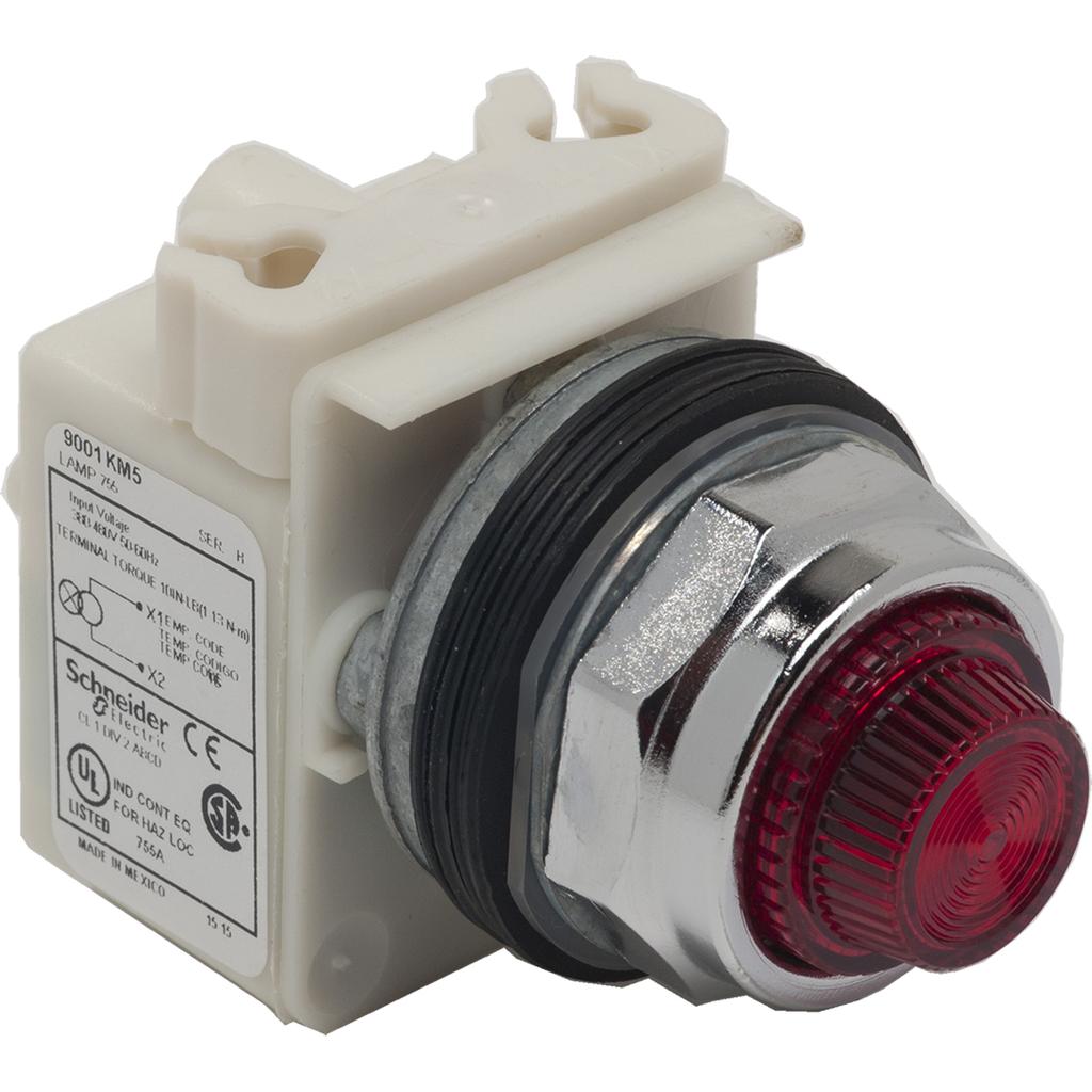 Mayer-PILOT LIGHT 480VAC 30MM TYPE K +OPTIONS-1
