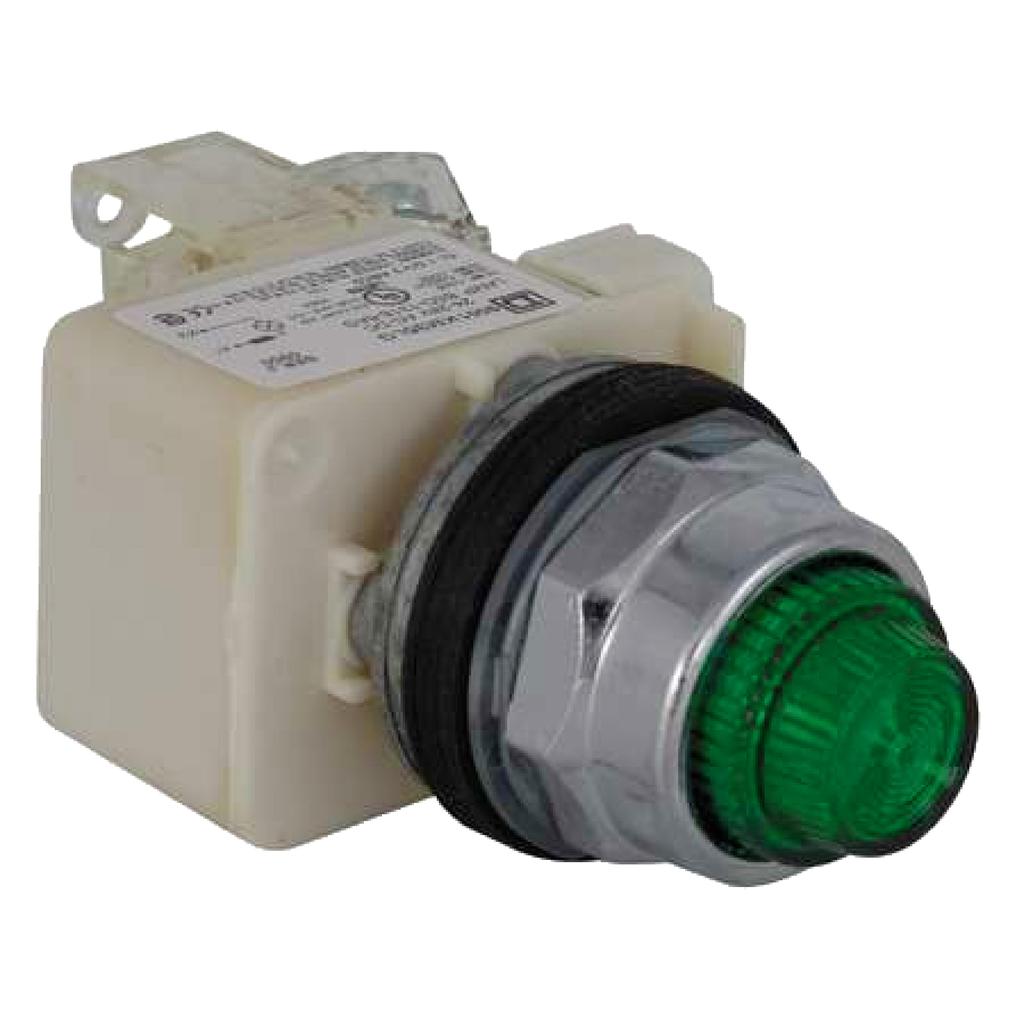 Mayer-PILOT LIGHT 120VAC 30MM TYPE K +OPTIONS-1