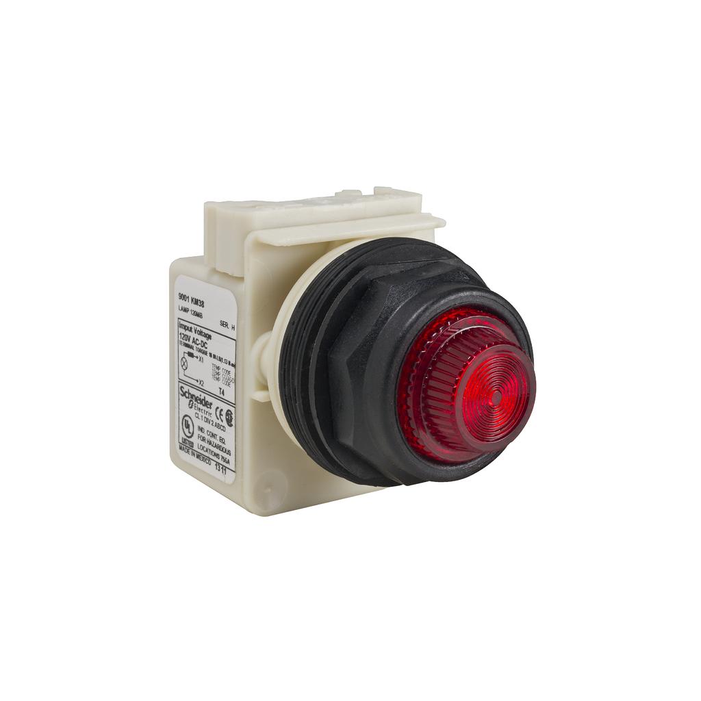 Mayer-PILOT LIGHT 120V 30MM SK +OPTIONS-1