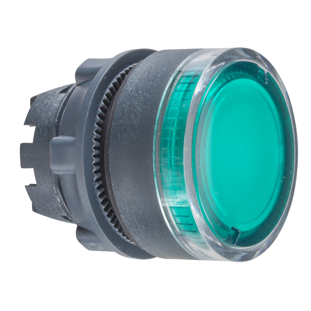Mayer-Harmony XB5, Illuminated push button head, plastic, flush, green, Ø22, spring return, plain lens integral LED-1
