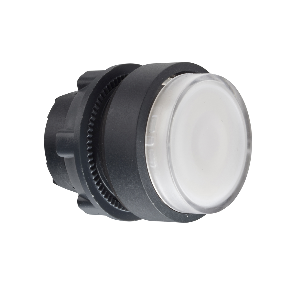 Mayer-Head for illuminated push button, Harmony XB5, XB4, white projecting pushbutton Ø22 mm spring return integral LED-1