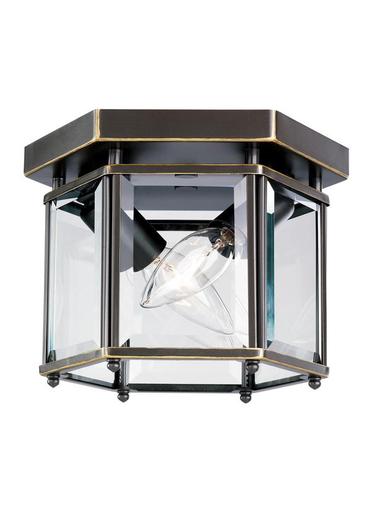 SEG 7647-782 2 LIGHT BOUND GLASS CEILING LIGHT