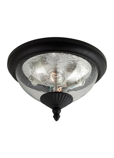 SEG 88068-12 2 LIGHT CEILING OUTDOOR