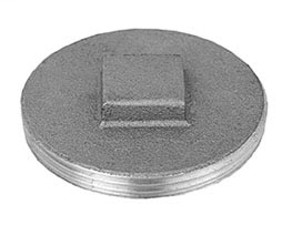 876-30 Brass Flush Plug