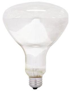Philips Lighting 389130 BR40 Reflector Incandescent Lamp 65 Watt E26 Medium Base 620 Lumens 2710K