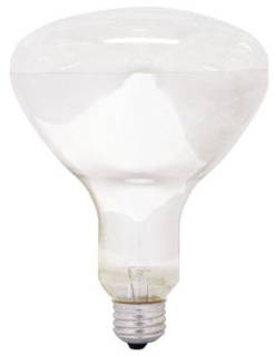 Incandescent Reflector Lamp