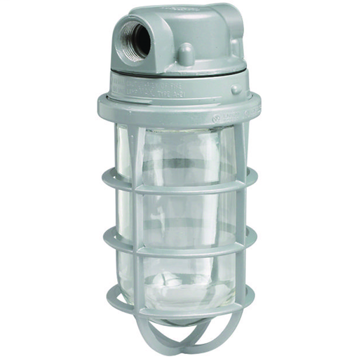 """100W V Series Incandescent - 1/2"""" Hub With Globe and Guard"""